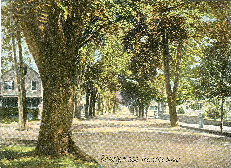 Postcard of Thorndike St.
